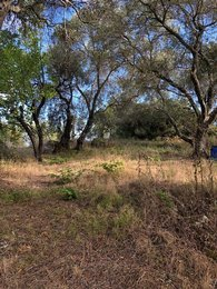 LAND for Sale - EAST CORFU