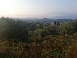 LAND for Sale - WEST CORFU